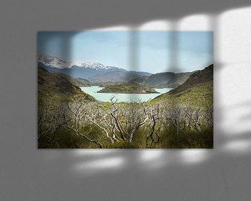 Patagonien, Torres del Paine National Park, Chile von Jille Zuidema