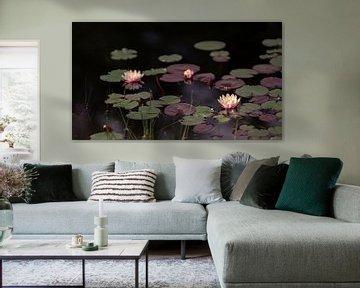 Waterlelies (3) van Mayra Pama-Luiten