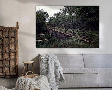 Een oude brug met een vergaande trein aan het eind van het spoor van Steven Dijkshoorn