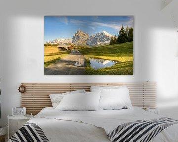 Sur l'Alpe di Siusi dans le Tyrol du Sud