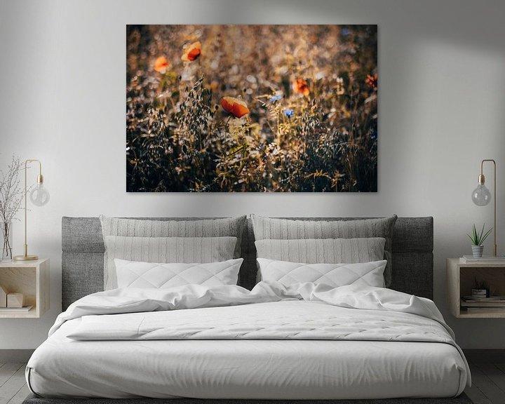 Beispiel: Mohnblume im Feld von Denny Lerch