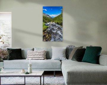 Rivier in de Pirin mountains in Bulgarije van Jessica Lokker