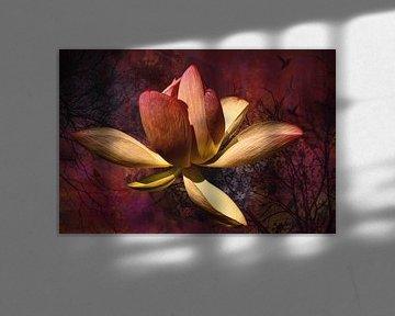 Lotusbloem met hortensia, bomen en lieveheersbeestje van Helga Blanke
