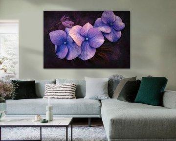 Hortensia, blauw met een libelle en bladeren