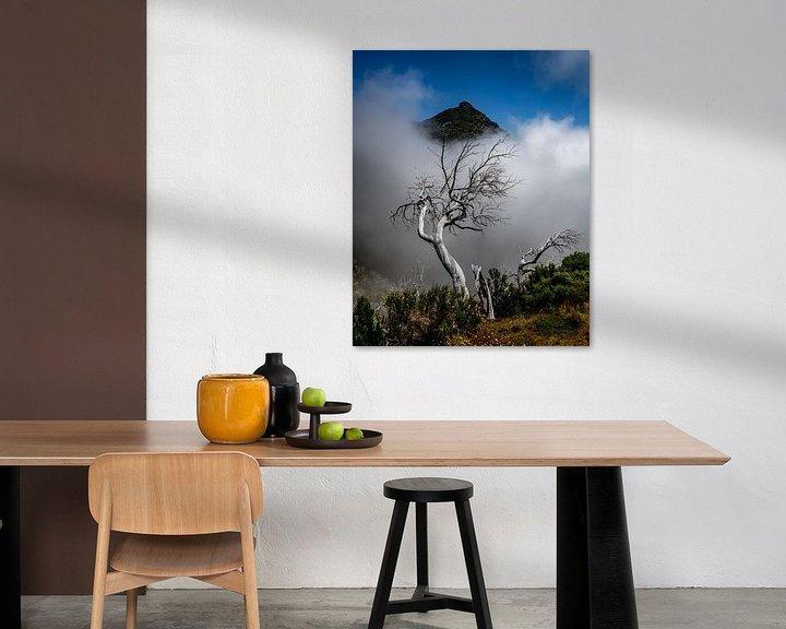 Impression: treetop sur Stefan Bauwens Photography