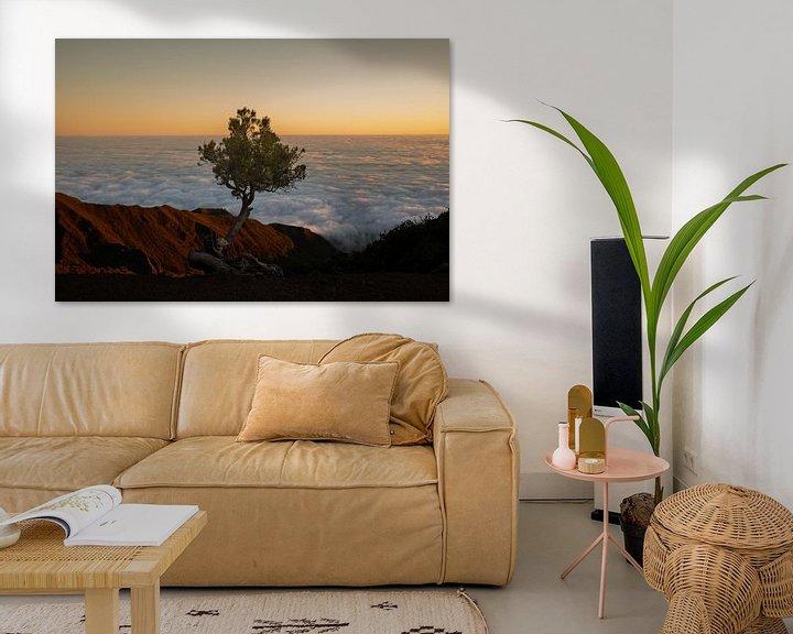 Sfeerimpressie: eenzaam boompje van Stefan Bauwens Photography