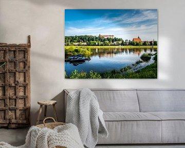 Sicht am Elbufer auf die Stadt Pirna von Animaflora PicsStock