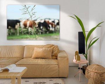 Grashalm mit Kühen im Hintergrund von Willemien Reddingius