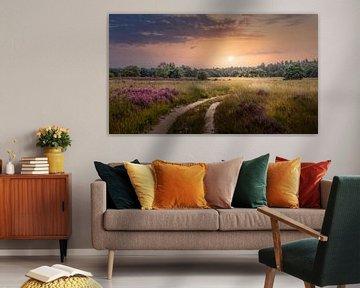 Heidelandschap met zonsondergang van Peschen Photography
