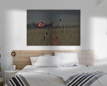 Mohnblumen von Hansi Corstjens