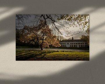 Landgoed Genbroek (2017) von Ronald Smeets Photography
