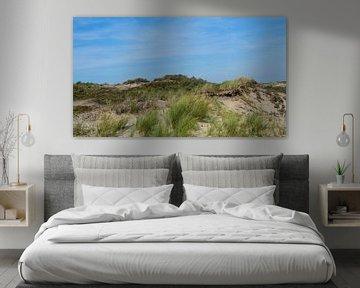 Dunes, Wassenaarseslag, Wassenaar, Pays-Bas sur themovingcloudsphotography
