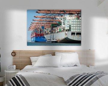 De internationale haven van Rotterdam van Elles Rijsdijk