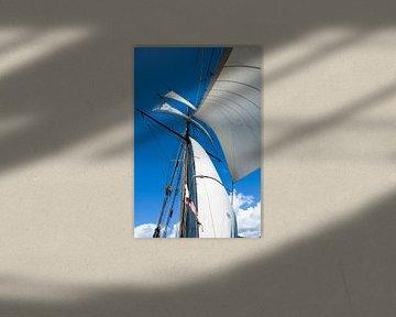wind in het zeil van Erich Fend