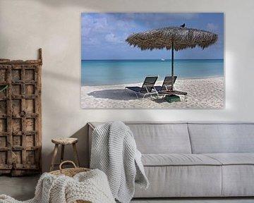 eagle beach, aruba sur gea strucks