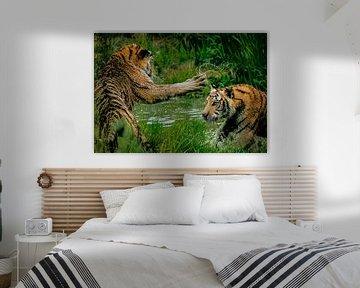 """Tiger im Kampf """"Leadership"""" von Truckpowerr"""