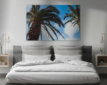 Twee palmbomen in de zomer van Marjolijn Maljaars