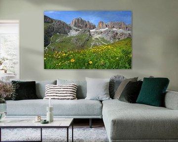 Paysage de montagne et fleurs jaunes sur le Passo Pordoi Italie sur My Footprints