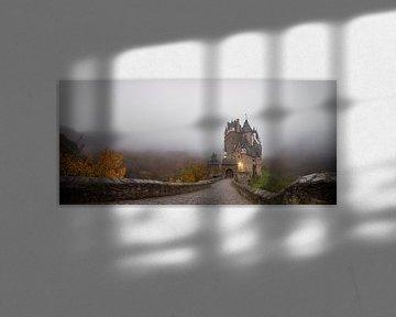 Schloss im Nebel von Maikel Brands
