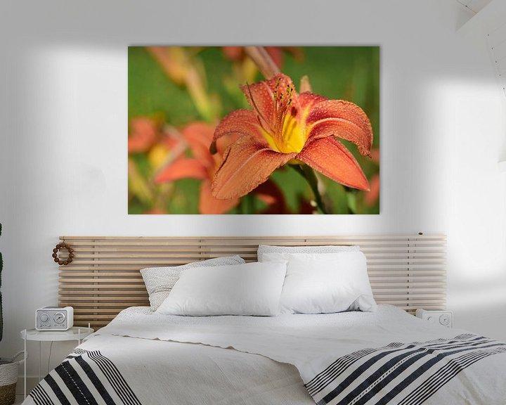 Sfeerimpressie: Daylily in de lente van Ulrike Leone