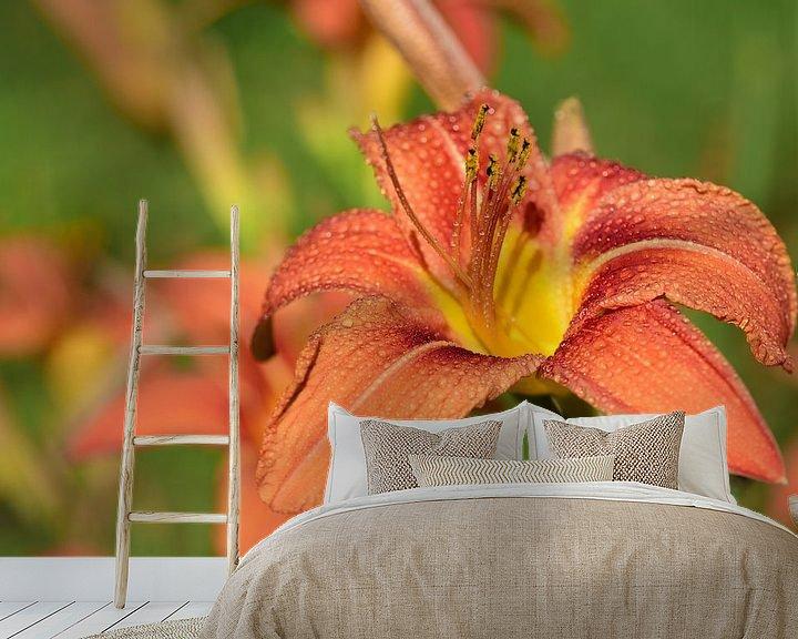 Sfeerimpressie behang: Daylily in de lente van Ulrike Leone