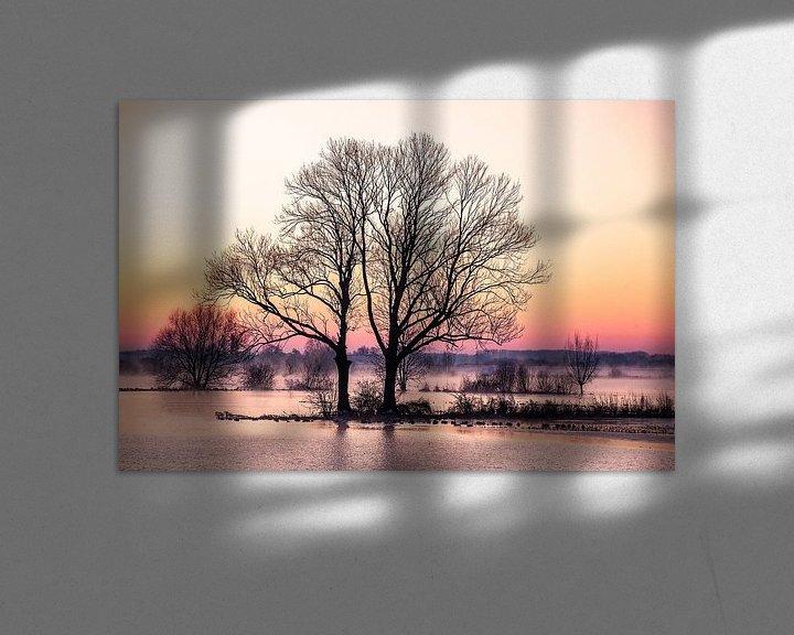 Sfeerimpressie: Bomen langs de IJssel, winterlandschap 1 van Wilma Wijnen