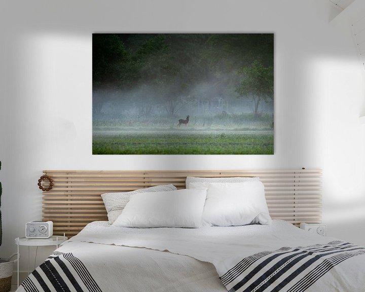 Impression: chevreuil dans le brouillard du matin sur Ed Klungers