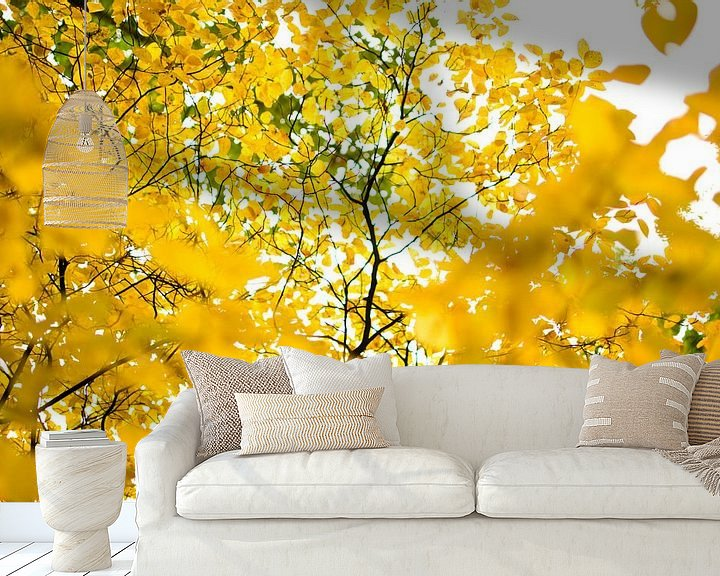 Sfeerimpressie behang: Gele bladeren in het park van Ricardo Bouman