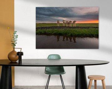 Koeien in spiegelbeeld van Jolanda de Leeuw