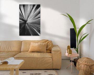 Schwarze und weiße Pflanze von Melanie Schat