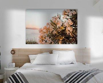 bloemen met zonsondergang zomer fibe van shanine Roosingh