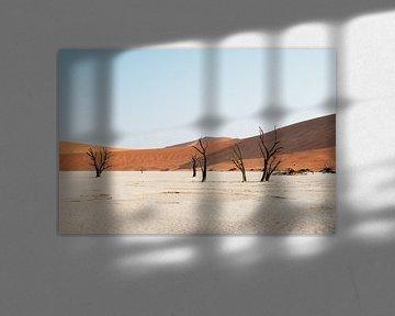 Deadvlei || Namibië, Sossusvlei van Suzanne Spijkers