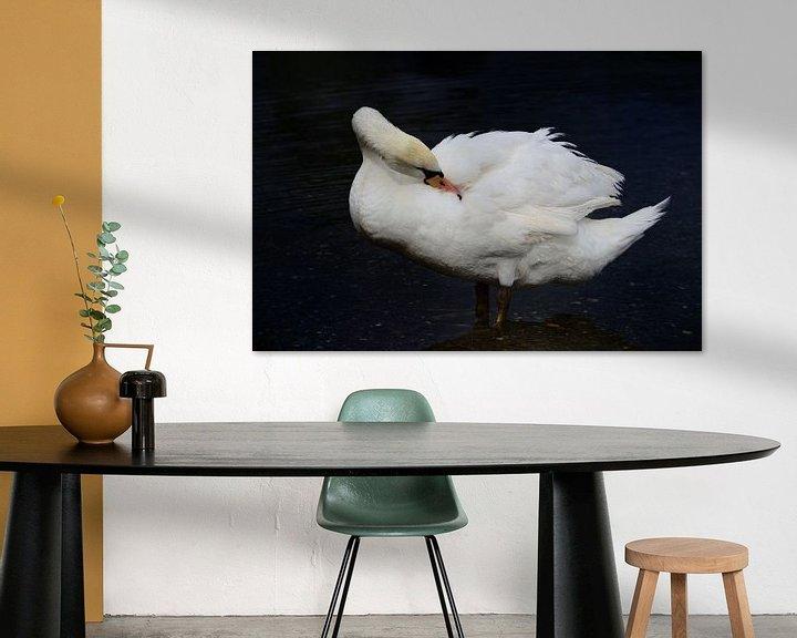Sfeerimpressie: Verzorging witte zwanenveren van Ulrike Leone