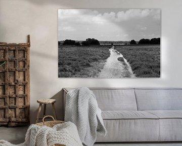 Über der Ermeloschen Heide in schwarz-weiß von Gerard de Zwaan
