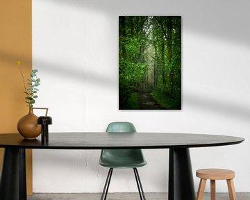 In het donkere bos (schilderij) van Art by Jeronimo