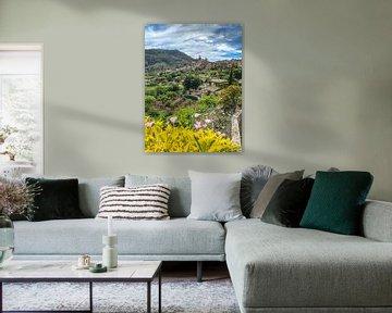 Valdemossa Mallorca im Frühling