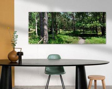 Leuvenumsche bos panorama van Gerard de Zwaan