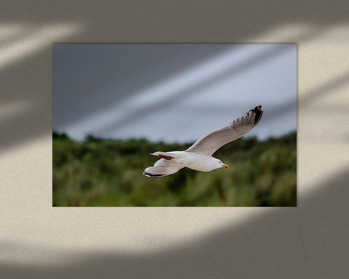 Sfeerimpressie: Zwevende zeemeeuw van 2BHAPPY4EVER.com photography & digital art