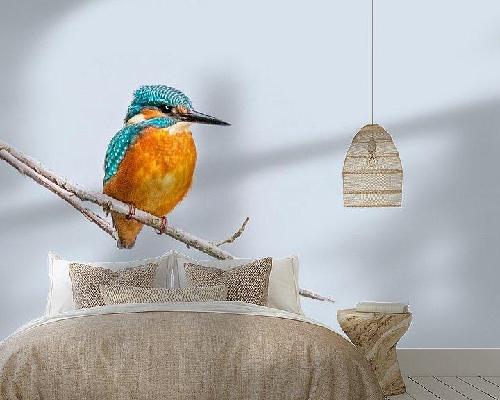 Sfeerimpressie behang: Prachtige ijsvogel van Roosmarijn Bruijns