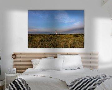 Paysage d'Ameland sur Annemarie Veldman