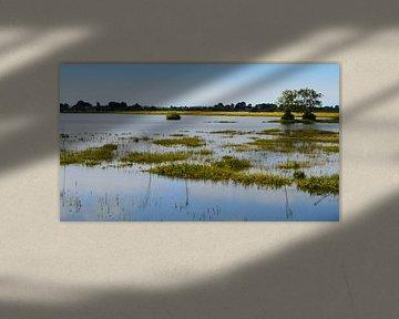 Rivier de IJssel buiten zijn oevers van Greta Lipman