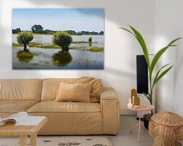 Uiterwaarden van de rivier de IJssel van Greta Lipman