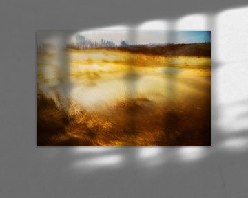 Een kleine poel, ideaal voor abstract werk - 6 van Danny Budts