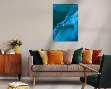 Abstraktes Makro-Detail eines Blattes - Natur in Blau von Marianne van der Zee