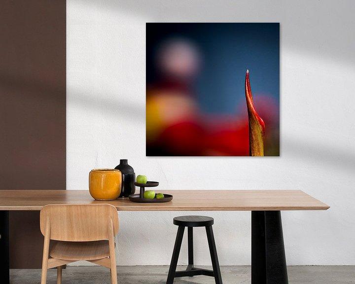Sfeerimpressie: een stukje tulp van Dick Jeukens
