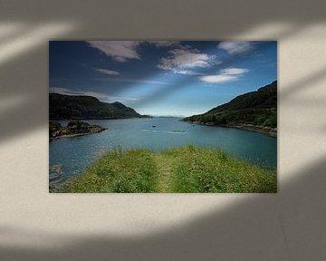 Loch Carron in Stromemore van Babetts Bildergalerie