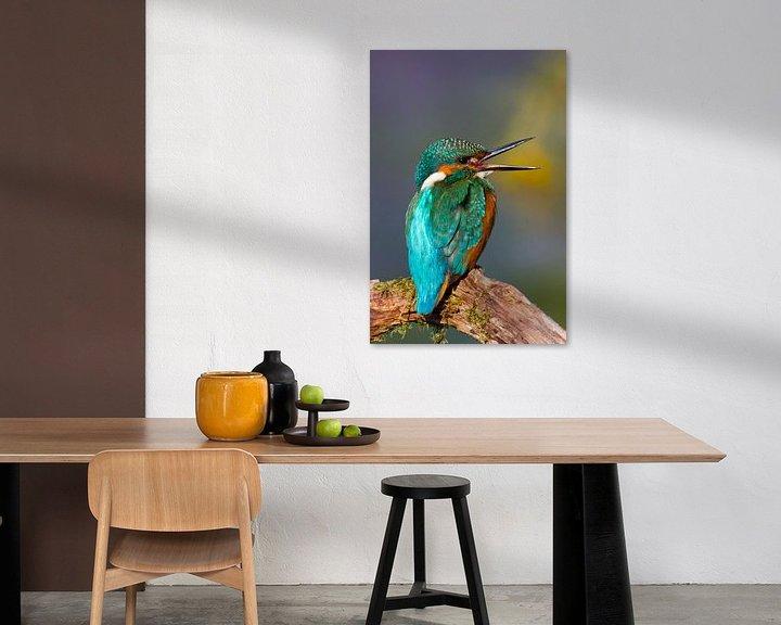 Sfeerimpressie: Kingfisher centrale européenne van Ursula Di Chito