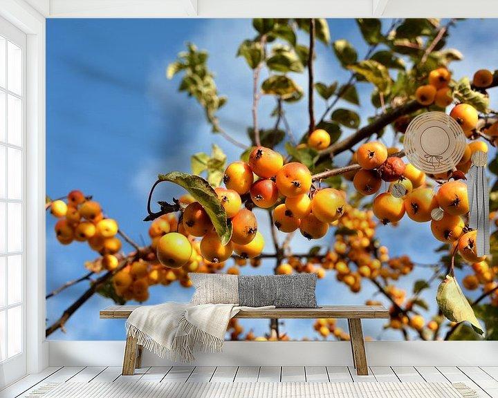 Sfeerimpressie behang: Rijp fruit van een sierappelboom langs de weg van Heiko Kueverling