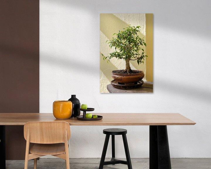 Sfeerimpressie: Bonsai van een Ficus benjamina van Heiko Kueverling