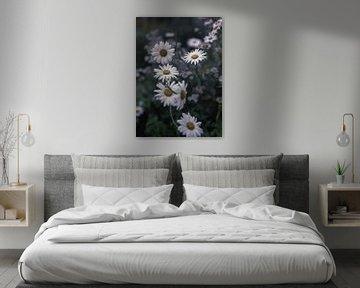 fleurs partie 180 sur Tania Perneel